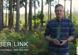 The Ultimate Renewable™ – Timberlink Supports Industry Campaign