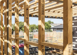 Light-Weight Timber Systems for Mid-Rise