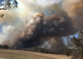 Bush Fire Threat in NSW/QLD – Employment Related Advice